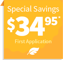 Special Savings on First Application