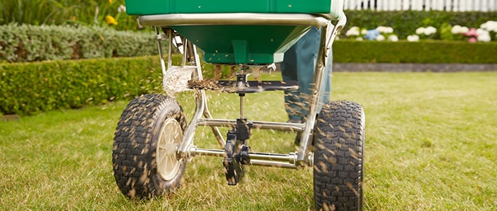 TruGreen will tailor a treatment plan custom to your lawn, so it will reach its full potential.
